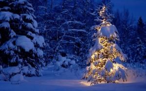 Christmas Night 1